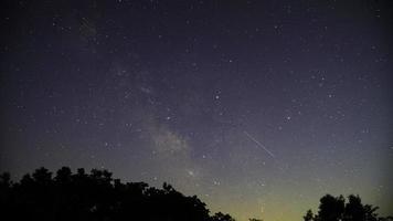 Silhouette der Bäume während der Nacht mit Sternen
