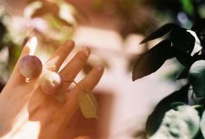 ästhetisches Filmfoto von Früchten und Blättern auf der Hand einer Person
