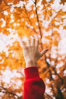 Hand gegen gelbe Blätter foto