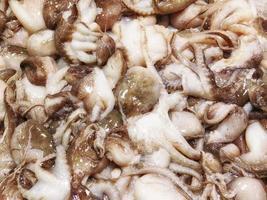 schleimige Tintenfischtentakeln foto