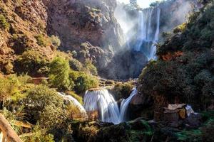 Wasserfälle und Bäume während des Tages