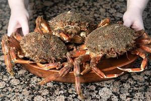 Krabben auf einem Teller foto