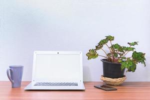 Laptop und Blume auf dem Schreibtisch