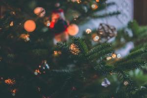 Weihnachtsbaum und Bokeh Lichter