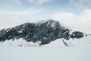 frisch gefallener Schnee foto