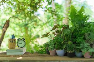 Bücher und Pflanzen Uhr auf dem Schreibtisch