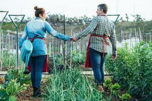 lächelndes Bauernpaar, das Hände in einem organischen Feld hält foto