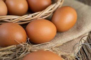 rohe Eier auf Hanf und Stroh