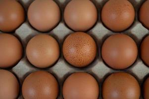 Hühnereier auf eine Eierablage gelegt