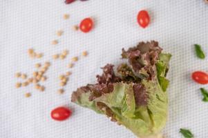 Nahaufnahme von Salat und Tomaten auf weißem Hintergrund