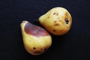zwei Birnen auf schwarz foto