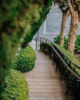 brauner Holzweg zwischen grünen Pflanzen während des Tages