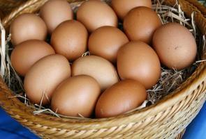 Eier in einem Korb foto