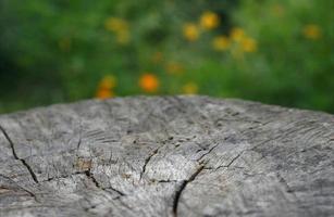 hölzerne Landtischplatte vor einem unscharfen Hintergrund foto