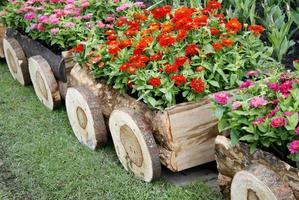 Blumen in Holzwagen foto