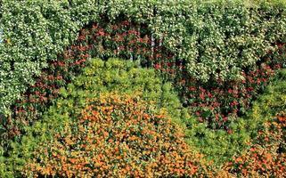 Blumenwand vertikaler Garten