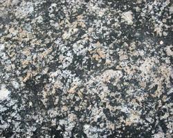 schwarzer und weißer Stein foto