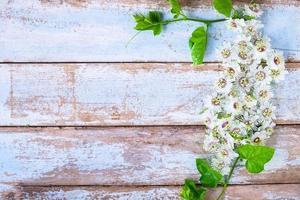 hölzerner Hintergrund mit Blumen foto
