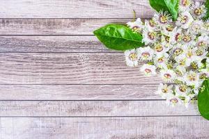 Holzhintergrund mit Blumen foto