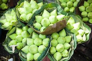 Lotus auf dem Markt