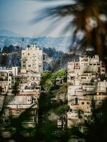 San Francisco, CA, 2020 - weißes Betongebäude nahe grünen Bäumen unter blauem Himmel während des Tages