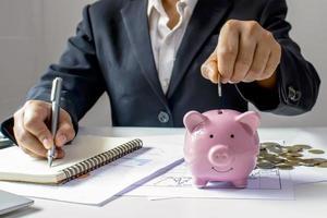professionelles Geld in Sparschwein stecken