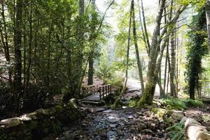 Brücke über einen kleinen Fluss