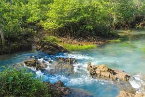 Fluss und Wald mit bewölktem blauem Himmel foto