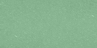 grobkörnige grüne Textur foto