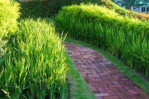 Backsteinweg auf grünem Gras foto