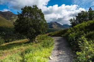 Wanderweg in Alaska während des Tages foto