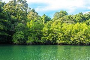 Fluss, Wald und bewölkter Himmel in Thailand