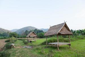 Hütte auf dem Feld