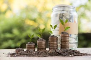 Geld in einem Glas in der Natur, Investitionskonzept foto