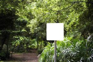 weiße leere Plakatwand im Park mit Naturhintergrund