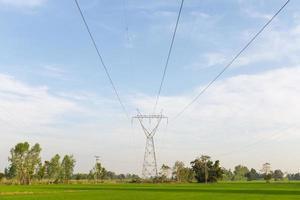 Stromübertragungsleitungen über Reisfeldern