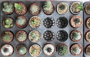 Blumentopfhalter