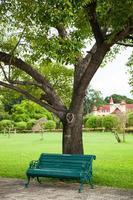 Bank unter einem Baum foto