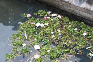 Müll und Unkraut im Fluss in Bangkok foto