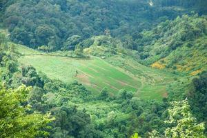 landwirtschaftliche Fläche in den Bergen