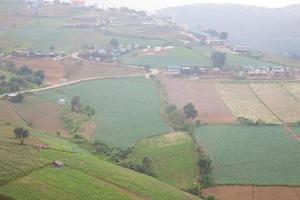 Bauernhöfe in den Bergen in Thailand