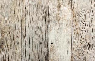 helle Holz Textur Oberfläche foto