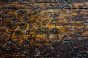 Nahaufnahme der verkohlten oder verbrannten Holzwand für Textur oder Hintergrund foto