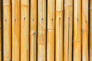 gelber Bambuszaun für Hintergrund