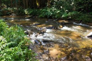 Fluss und Felsen im Wald foto