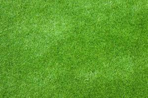 grünes Gras für Textur oder Hintergrund foto