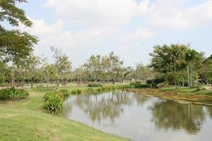 Teich im Garten foto