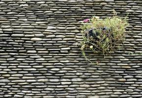 Pflanzgefäß an der Wand