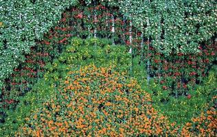 vertikale Wand aus Blumen