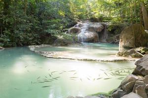kleiner Wasserfall im Wald foto